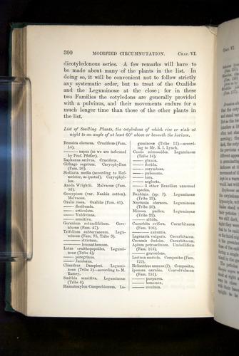 Image of Darwin-F1325-1880-300