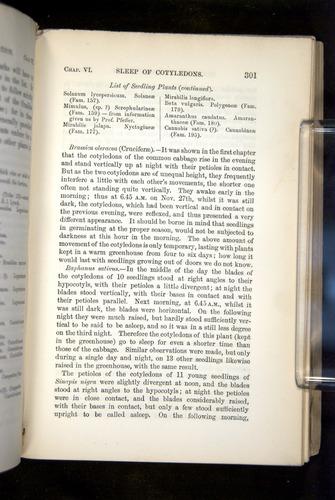 Image of Darwin-F1325-1880-301