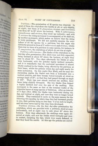 Image of Darwin-F1325-1880-309