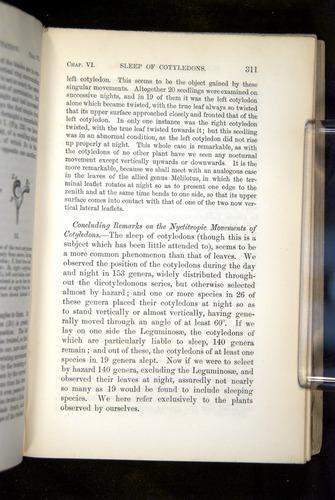 Image of Darwin-F1325-1880-311