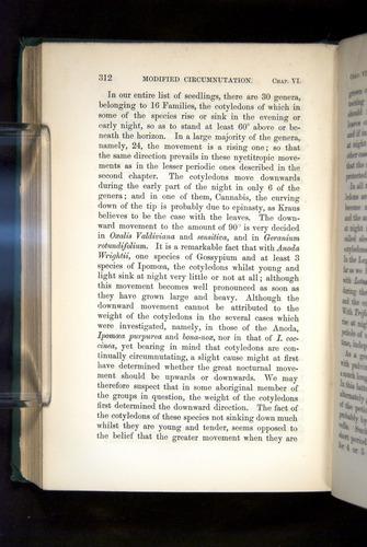 Image of Darwin-F1325-1880-312