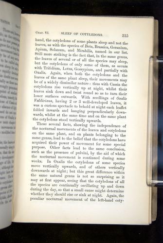 Image of Darwin-F1325-1880-315