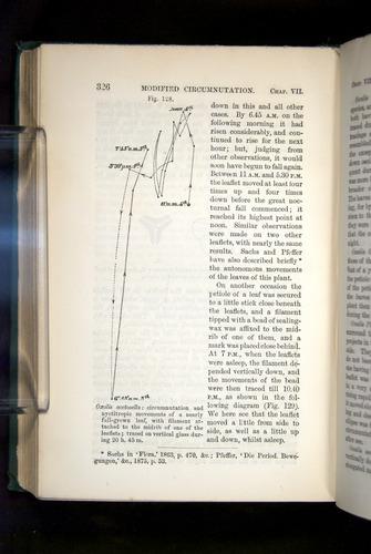 Image of Darwin-F1325-1880-326