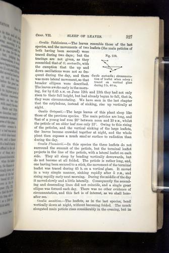 Image of Darwin-F1325-1880-327