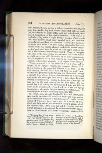 Image of Darwin-F1325-1880-336