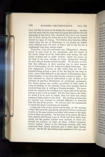 Image of Darwin-F1325-1880-338