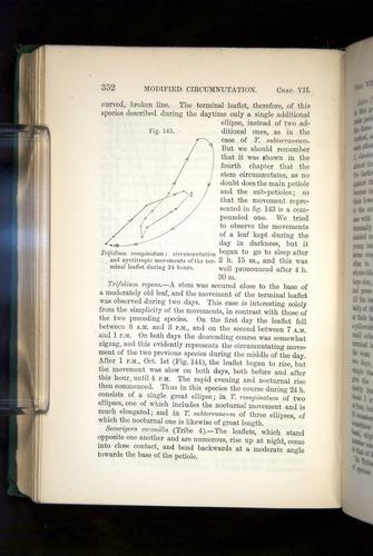 Image of Darwin-F1325-1880-352