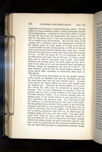 Image of Darwin-F1325-1880-362