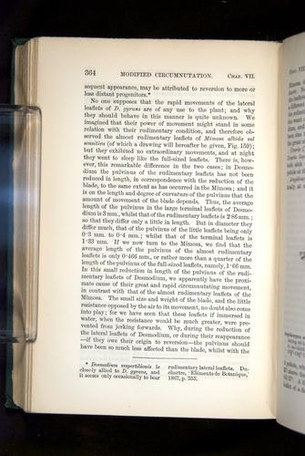 Image of Darwin-F1325-1880-364