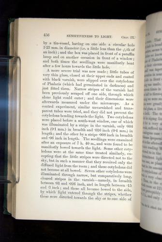 Image of Darwin-F1325-1880-456
