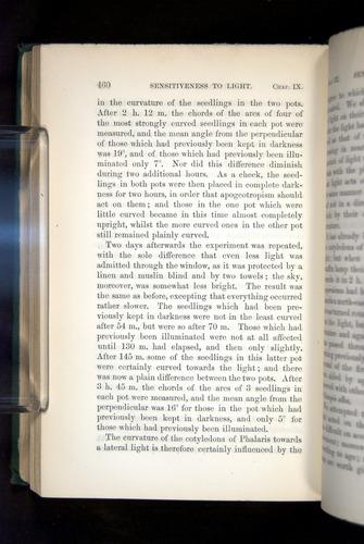 Image of Darwin-F1325-1880-460