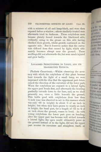 Image of Darwin-F1325-1880-468