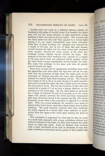 Image of Darwin-F1325-1880-474