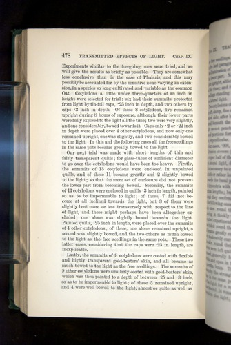 Image of Darwin-F1325-1880-478