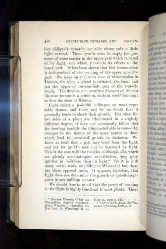 Image of Darwin-F1325-1880-486
