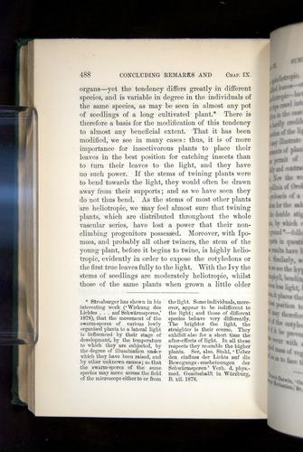 Image of Darwin-F1325-1880-488