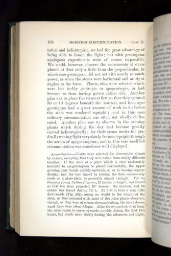 Image of Darwin-F1325-1880-494