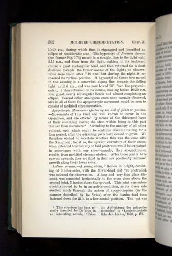 Image of Darwin-F1325-1880-502