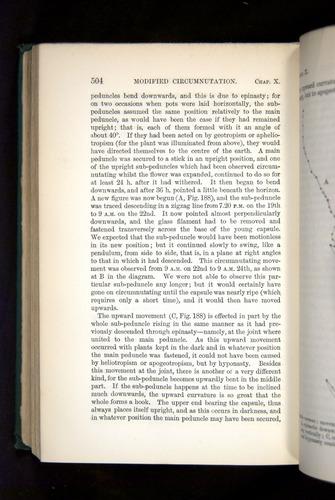 Image of Darwin-F1325-1880-504