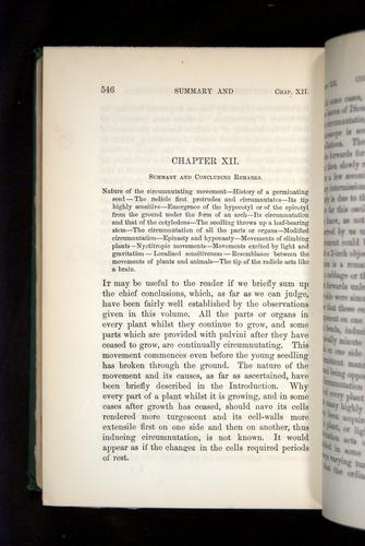 Image of Darwin-F1325-1880-546