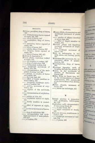 Image of Darwin-F1325-1880-584