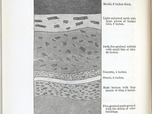Image of Darwin-F1357-1881-det-208