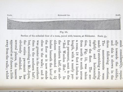 Image of Darwin-F1357-1881-det-212