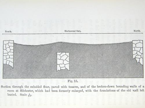 Image of Darwin-F1357-1881-det-216