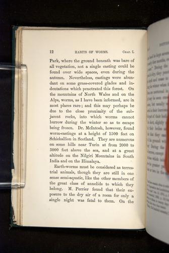 Image of Darwin-F1357-1881-012