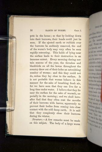 Image of Darwin-F1357-1881-016