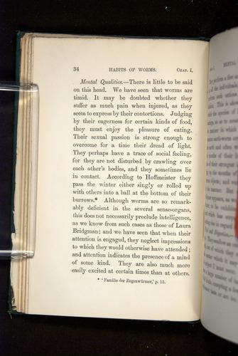 Image of Darwin-F1357-1881-034