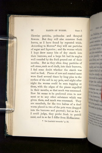 Image of Darwin-F1357-1881-036