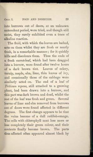 Image of Darwin-F1357-1881-039