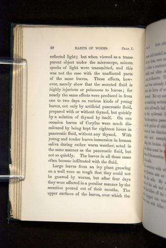 Image of Darwin-F1357-1881-040