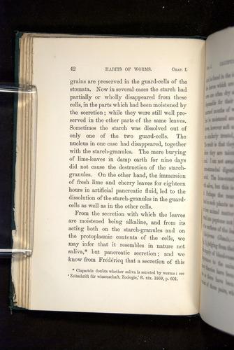 Image of Darwin-F1357-1881-042