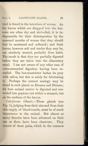 Image of Darwin-F1357-1881-043