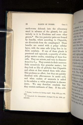 Image of Darwin-F1357-1881-044