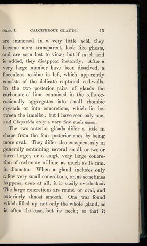 Image of Darwin-F1357-1881-045