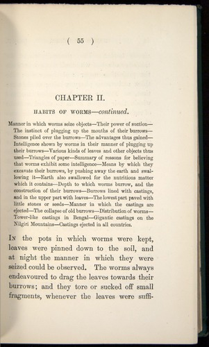 Image of Darwin-F1357-1881-055