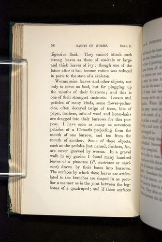 Image of Darwin-F1357-1881-058