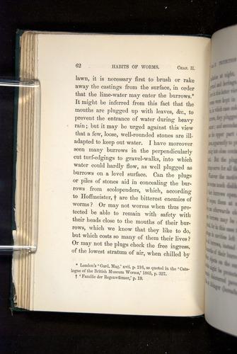 Image of Darwin-F1357-1881-062