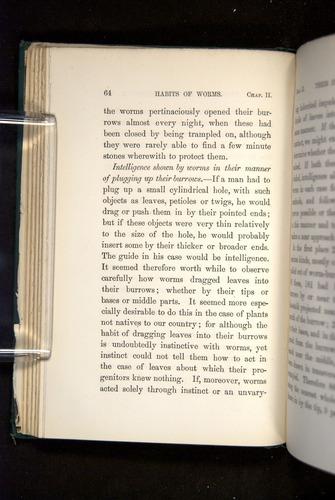 Image of Darwin-F1357-1881-064