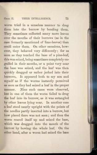 Image of Darwin-F1357-1881-073