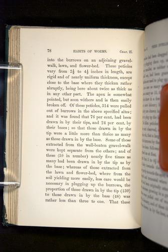 Image of Darwin-F1357-1881-078
