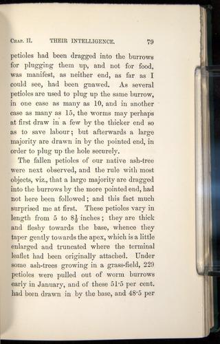 Image of Darwin-F1357-1881-079