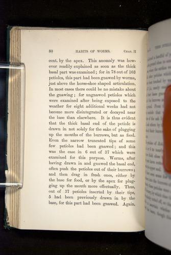 Image of Darwin-F1357-1881-080