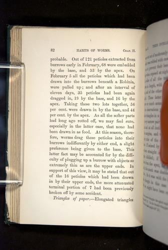 Image of Darwin-F1357-1881-082