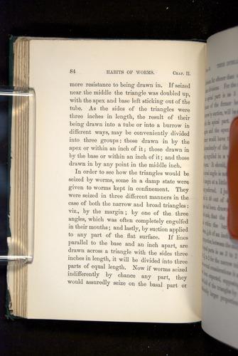 Image of Darwin-F1357-1881-084