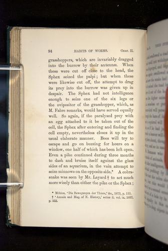 Image of Darwin-F1357-1881-094