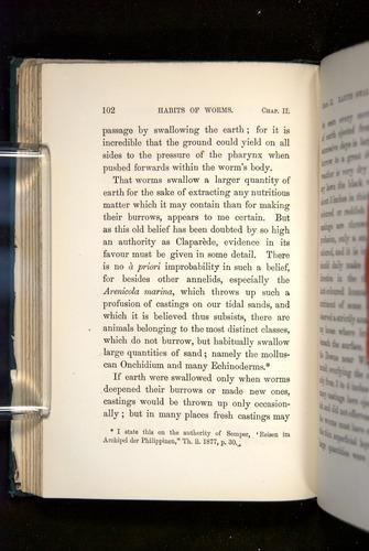 Image of Darwin-F1357-1881-102